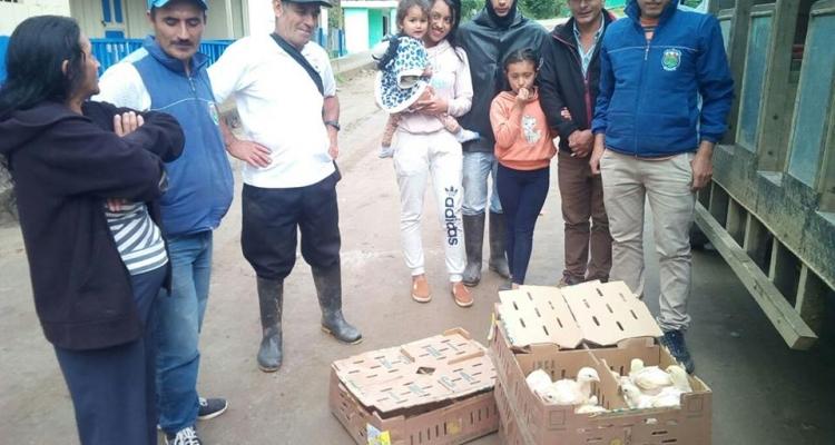 EL GAD PARROQUIAL INCENTIVANDO LA PRODUCCIÓN DE POLLO A SUS HABITANTES.
